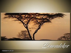 Obraz na zeď-krajina- Panorama F000007