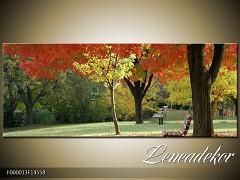 Obraz na zeď-krajina- Panorama F000013