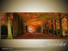 Obraz na zeď-krajina- Panorama F000014