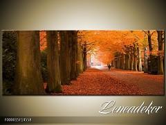 Obraz na zeď-krajina- Panorama F000015