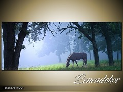 Obraz na zeď-krajina- Panorama F000062