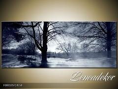 Obraz na zeď-krajina- Panorama F000105