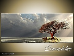 Obraz na zeď-krajina- Panorama F000138