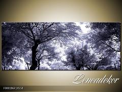 Obraz na zeď-krajina- Panorama F000186