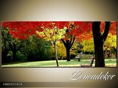 Obraz na zeď-krajina- Panorama F000191