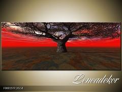 Obraz na zeď-krajina- Panorama F000197