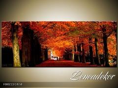 Obraz na zeď-krajina- Panorama F000211