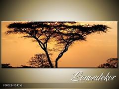 Obraz na zeď-krajina- Panorama F000234