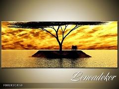Obraz na zeď-krajina- Panorama F000241