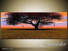 Obraz na zeď-krajina- Panorama F000291