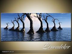 Obraz na zeď-krajina- Panorama F000307
