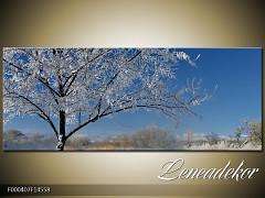Obraz na zeď-krajina- Panorama F000407