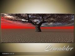 Obraz na zeď-krajina- Panorama F000443