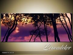 Obraz na zeď-krajina- Panorama F000473