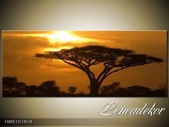 Obraz na zeď-krajina- Panorama F000511