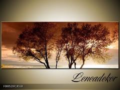 Obraz na zeď-krajina- Panorama F000520
