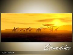 Obraz na zeď-krajina- Panorama F000645