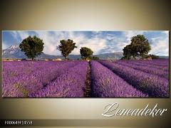 Obraz na zeď-krajina- Panorama F000649