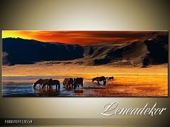 Obraz na zeď-krajina- Panorama F000707