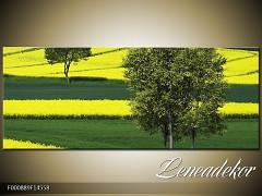 Obraz na zeď-krajina- Panorama F000889