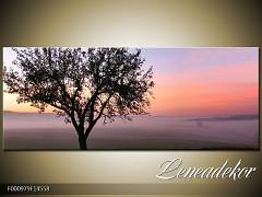 Obraz na zeď-krajina- Panorama F000979