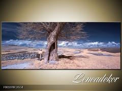 Obraz na zeď-krajina- Panorama F001078