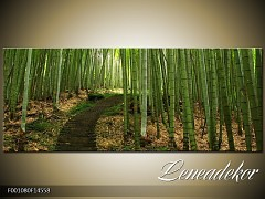 Obraz na zeď-krajina- Panorama F001080