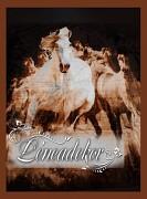 Deka španělská 160x210cm vzor koně