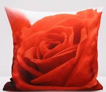 Povlak na polštář červená růže PJR58