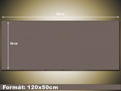 120x50cm panorama