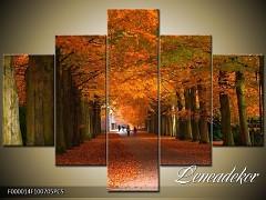 Obraz na zeď 5D F000014
