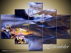 Obraz na zeď 5D F000016
