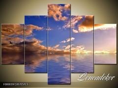 Obraz na zeď 5D F000039