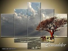 Obraz na zeď 5D F000138