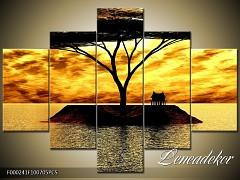 Obraz na zeď 5D F000241