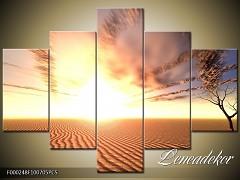 Obraz na zeď 5D F000248