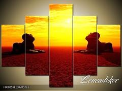 Obraz na zeď 5D F000259
