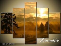 Obraz na zeď 5D F000477