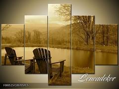 Obraz na zeď 5D F000515