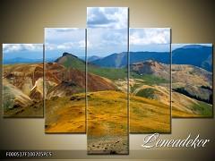 Obraz na zeď 5D F000517