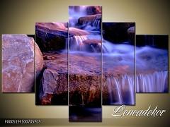 Obraz na zeď 5D F000519
