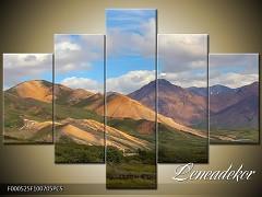 Obraz na zeď 5D F000525
