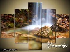 Obraz na zeď 5D F000572