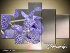 Obraz na zeď-květy- 5D F000086