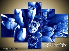 Obraz na zeď-květy- 5D F000188