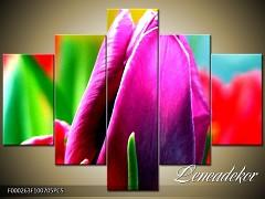 Obraz na zeď-květy- 5D F000263