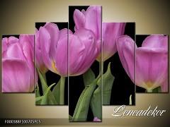 Obraz na zeď-květy- 5D F000388