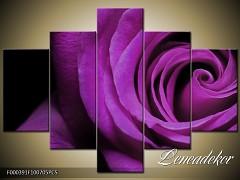 Obraz na zeď-květy- 5D F000391
