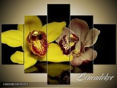 Obraz na zeď-květy- 5D F000398
