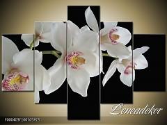 Obraz na zeď-květy- 5D F000403